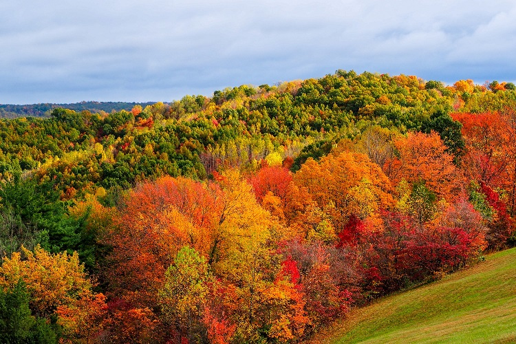Fall+offers+fireworks+of+color+in+Ohio.