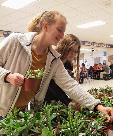 The LHS Ecology Club maintains the greenhouses in the high school and sells plants as a fund raiser.